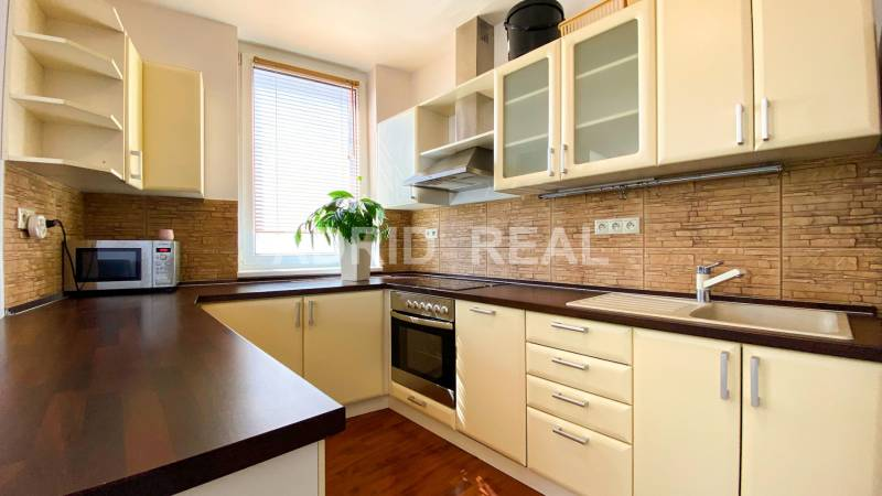 ADRID REAL FOR RENT - SPACIOUS BRIGHT FLAT NEXT TO THE LAKE