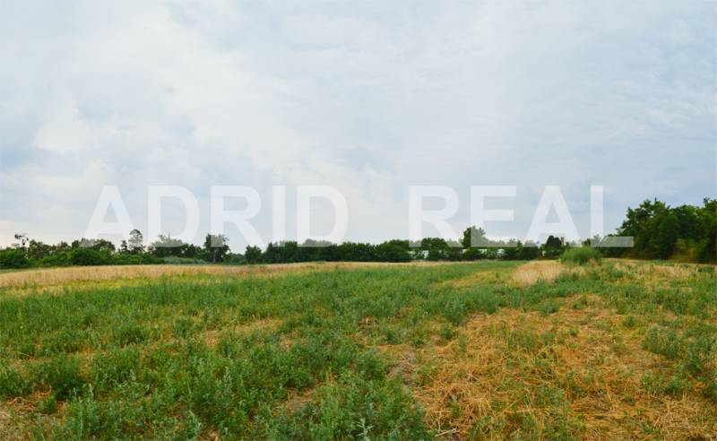 INVESTMENT PLOTS | FOR SALE